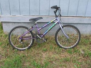 5 speed Super Trax kids bike