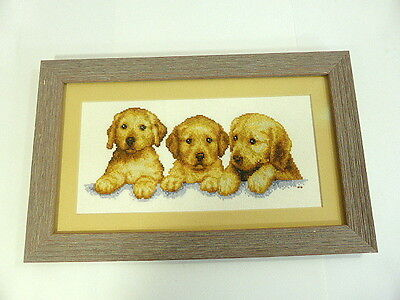 Разное Finished Framed Golden Labrador Retriever
