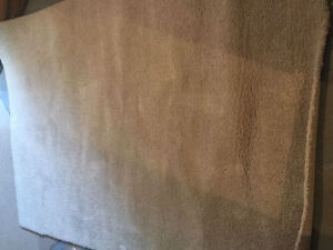 Light brown area rug. Approx 5 x 8 feet size