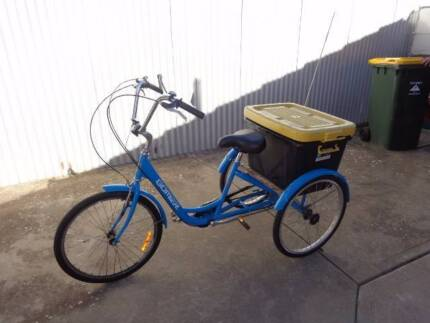 ADULT TRICYCLE WITH CARRY BOX