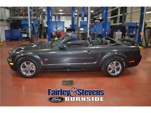 2008 Ford Mustang GT! Lather! Convertible!