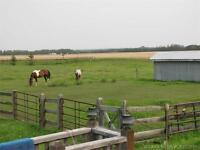 Acreage - 4 Acres Set up for horses Close to Red Deer