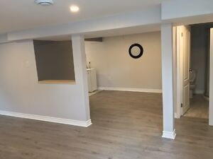 Basement Apartment in Orleans. Renovated !!! All included