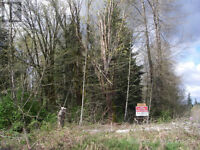 Acreage  (6.49 acres) along island  hwy with creek