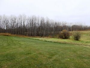Private corner 3.88 acres available in Beaver County Strathcona County Edmonton Area image 6