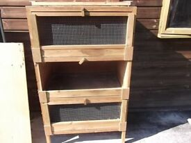 Guinee Pig Breeder Hutches - block of 3