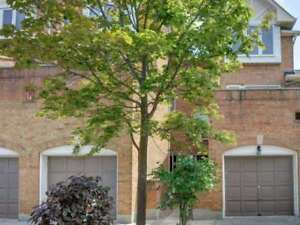 Perfect Starter Home Located In Prime Mississauga Location!