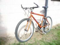 "JENSEN 18"" Mountain Bike Cost new £650"
