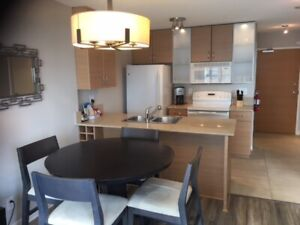 Water View One Bedroom Condo/Apartment in Downtown/Yaletown