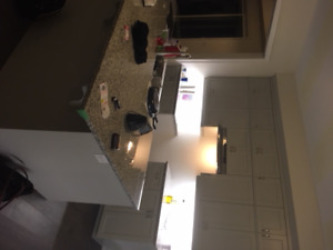 Brand New Kitchen Cabinet & Granite Counter