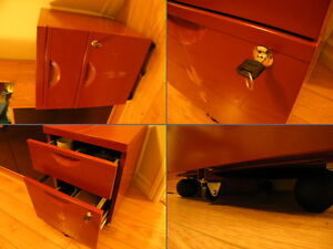 Rolling 2-Drawer filing cabinet