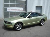 2006 Ford Mustang Convertible |Pony Package| Leather