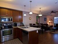 NEW PRICE! 1 Bdrm +Den Very Stylish Library Square Must See!!!!