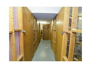 Bright Clean Carpet Free Condo Available March 1st Kitchener / Waterloo Kitchener Area image 9