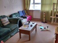 2 Bedroom Maisonette Homeswap From London to Morecambe, Lancaster or Heysham.