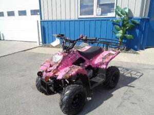 Special on all remaining stock ATVS and Dirtbikes