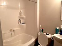 Sublet Spring Term-Reduced Price Fully Furnished 4 Rooms
