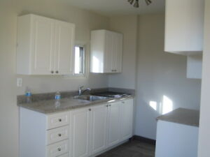 2 and 3 bedroom apts Available