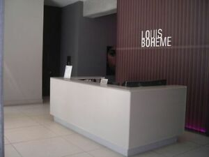 31/2 Luxury condo Louis Boheme Downtown Quartier des spectacles