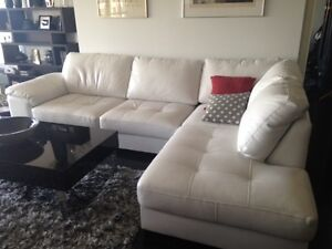 Sectional leather sofa and black coffee table