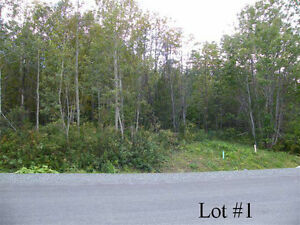 New Price! Beautiful 1 Acre Lots for Sale in New Victoria, NS