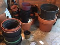 Plastic potted plants assorted sizes