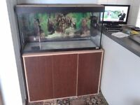 Fluval Roma tank and cabinet with heater - no filter or bulbs