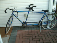Tandem: Bicycle built for two