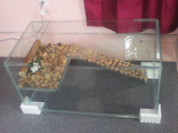 Assorted Reptile, Rodent, Plant and Turtle Tanks for Sale