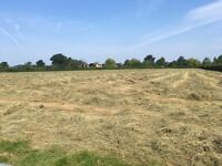 June 2017 Small Bale Hay For Sale