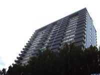 Available Nov 1 - Central James Bay – Top Floor – Panoramic View
