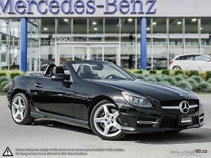 2015 Mercedes-Benz SLK-Class 250 Coupe (2 door)