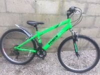 Mountain Bike - Reflex