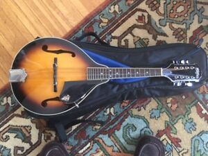 WASHBURN MANDOLIN IN MINT CONDITION WITH GIF BAG