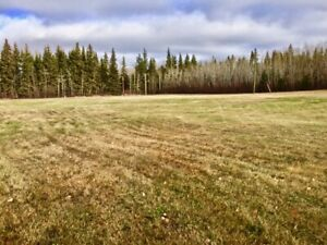 2.08 acres with Huge Potential in Glendon, AB