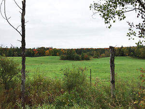 596.17A 99 Acres Abutting Crown Land In McDougall