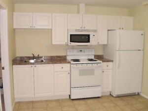 Ground-level one-bedroom suite with washer and dryer