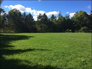 Last lot in an established subdivision