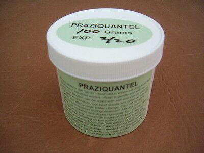 Praziquantel ( Prazi ) 100 grams