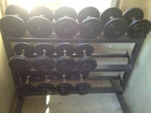 Yorkville Weights & Rack