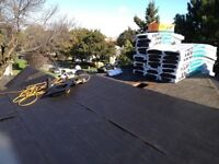 Professional roofing team quality and price guarantee