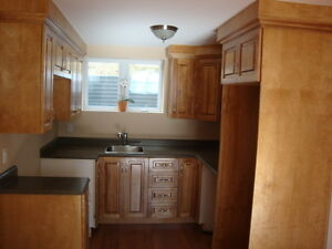 1 BEDROOM BASEMENT APARTMENT - EAST END – AVAILABLE SEPT 1