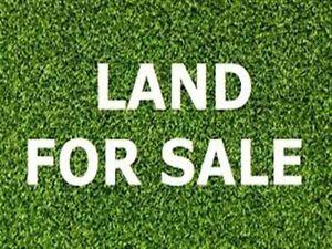 Wanted: Back yard and land Dandenong Greater Dandenong Preview