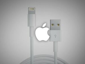 Apple iPhone Lightning USB Charging Cable iphone 5 5s 6 6+ Ipad
