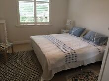 Large Room to Rent in Bellevue Hill Apartment Bellevue Hill Eastern Suburbs Preview
