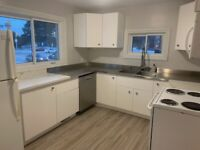 Bright renovated 3 Bedroom upper unit on Bayfield-immediately