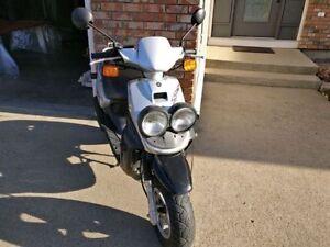 Yamaha Zuma 50 Scooter/Moped