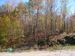AFFORDABLE WATERFRONT BUILDING LOT AT WHITE LAKE!