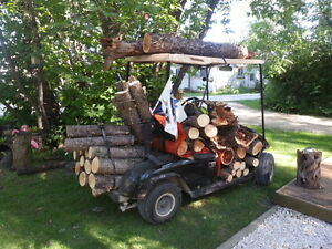 WANTED: FIREWOOD near Gimli/Arnes area for Firepit 1-2 cords $$$