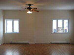 Spacious 2 bedroom cond style